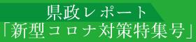 県政レポート「新型コロナ対策特集号」